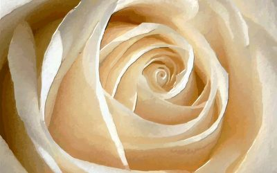 Leyenda  de las coronas de flores para difuntos en Tanatorio El Escorial