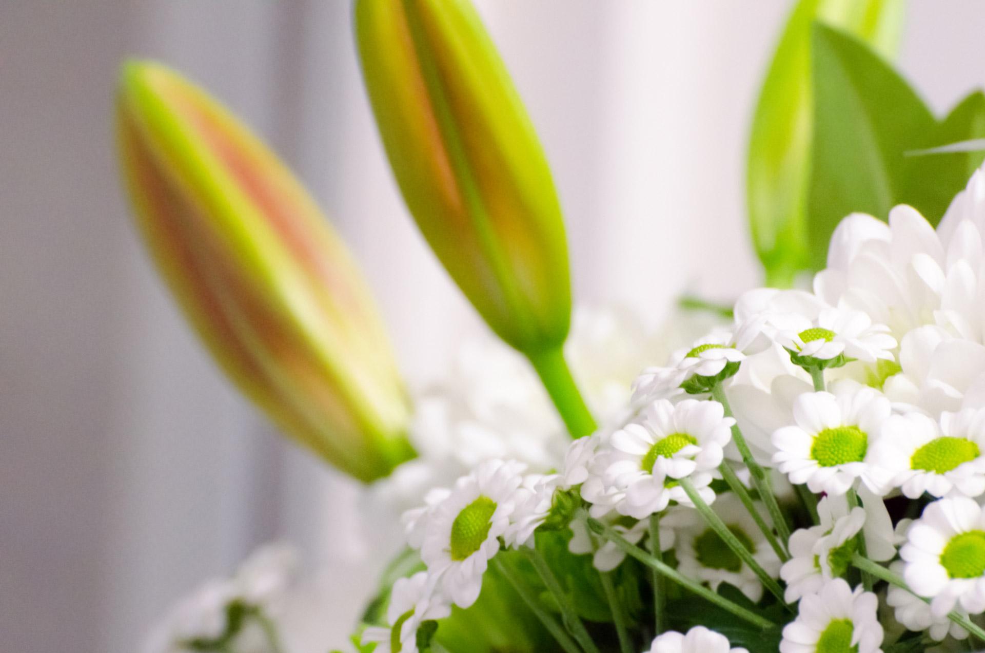 coronas de flores para Tanatorio Villanueva Del Pardillo